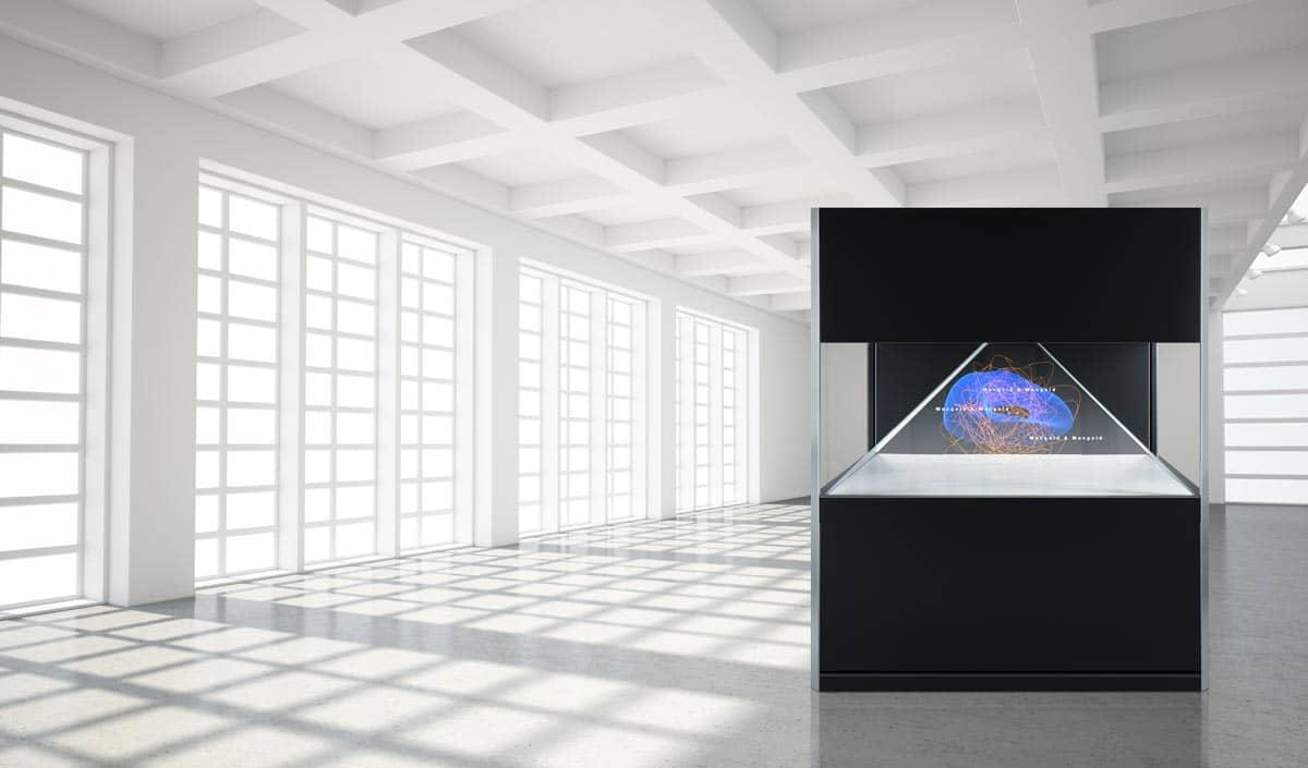 Holo Display Dreamoc XXL 180 Ausstellung Museum Beispiel