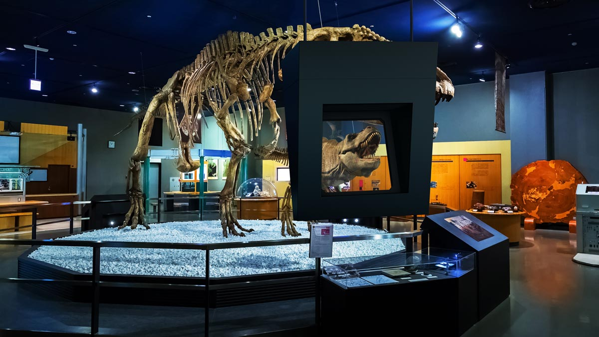 Augmented Reality Display Einsatz im Museum